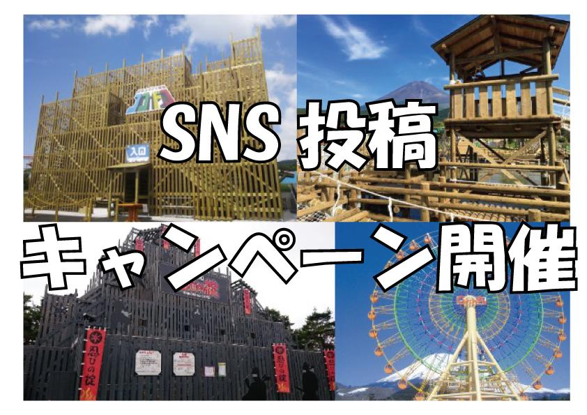 SNS投稿キャンペーン開催!