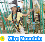 Wire Mountain
